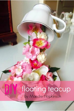 Mandie Hopkinsons floating cup