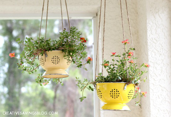 planter ideas colander
