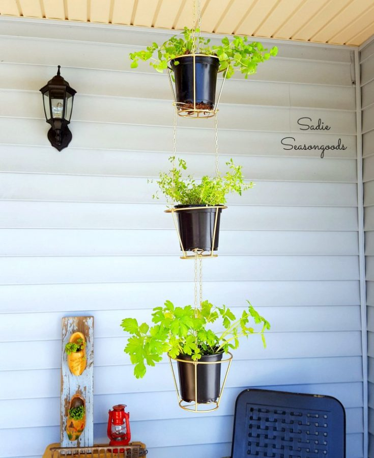 hanging planter ideas from sadies seasoned goods / grillo designs
