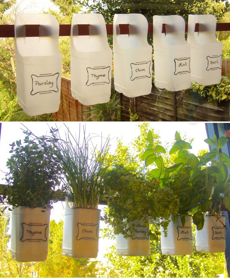 planter ideas milk bottle