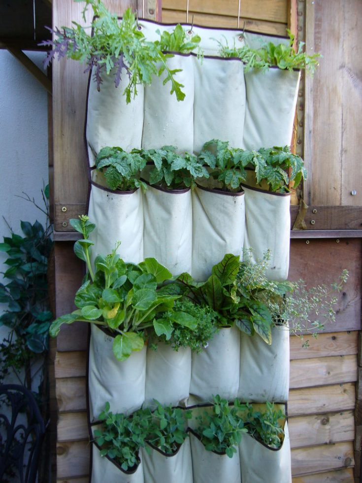 planter ideas sack