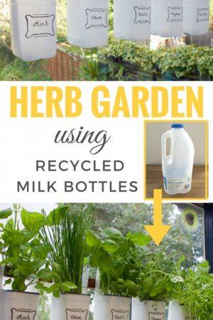 UPCYCLED plastic bottle indoor herb garden / grillo designs www.grillo-designs.com