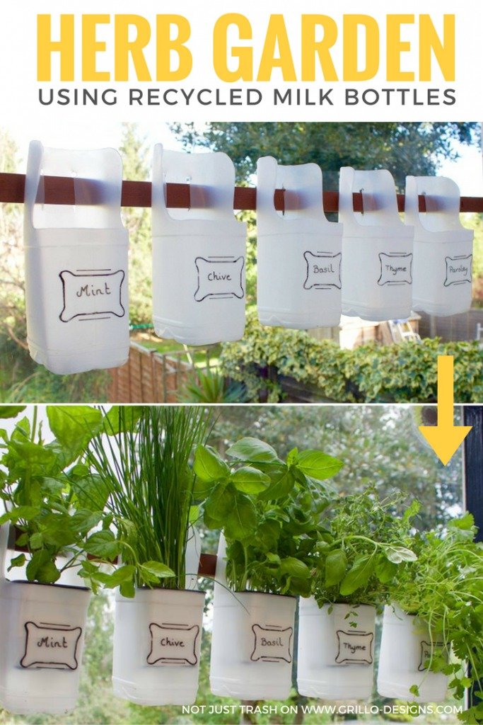 Indoor Bottle Herb Garden From Recycled Milk Bottles