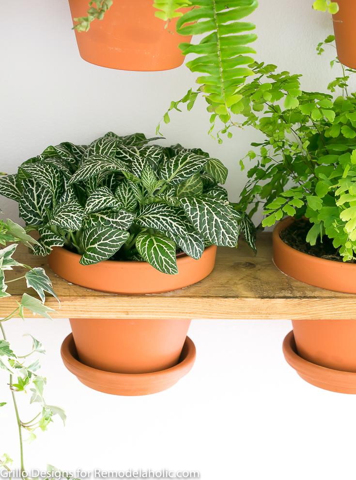 diy tutorial for hyllis ikea hack industrial wall planter shelf/ Grillo Designs www.grillo-designs.com