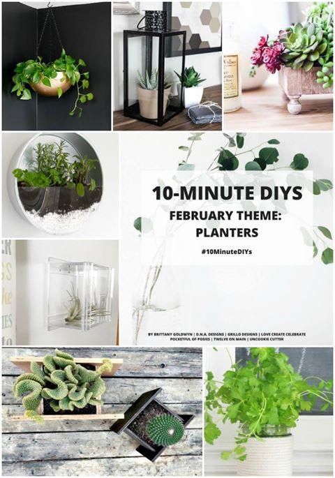 10 minute diys - diy herb planters / grillo designs www.grillo-designs.com