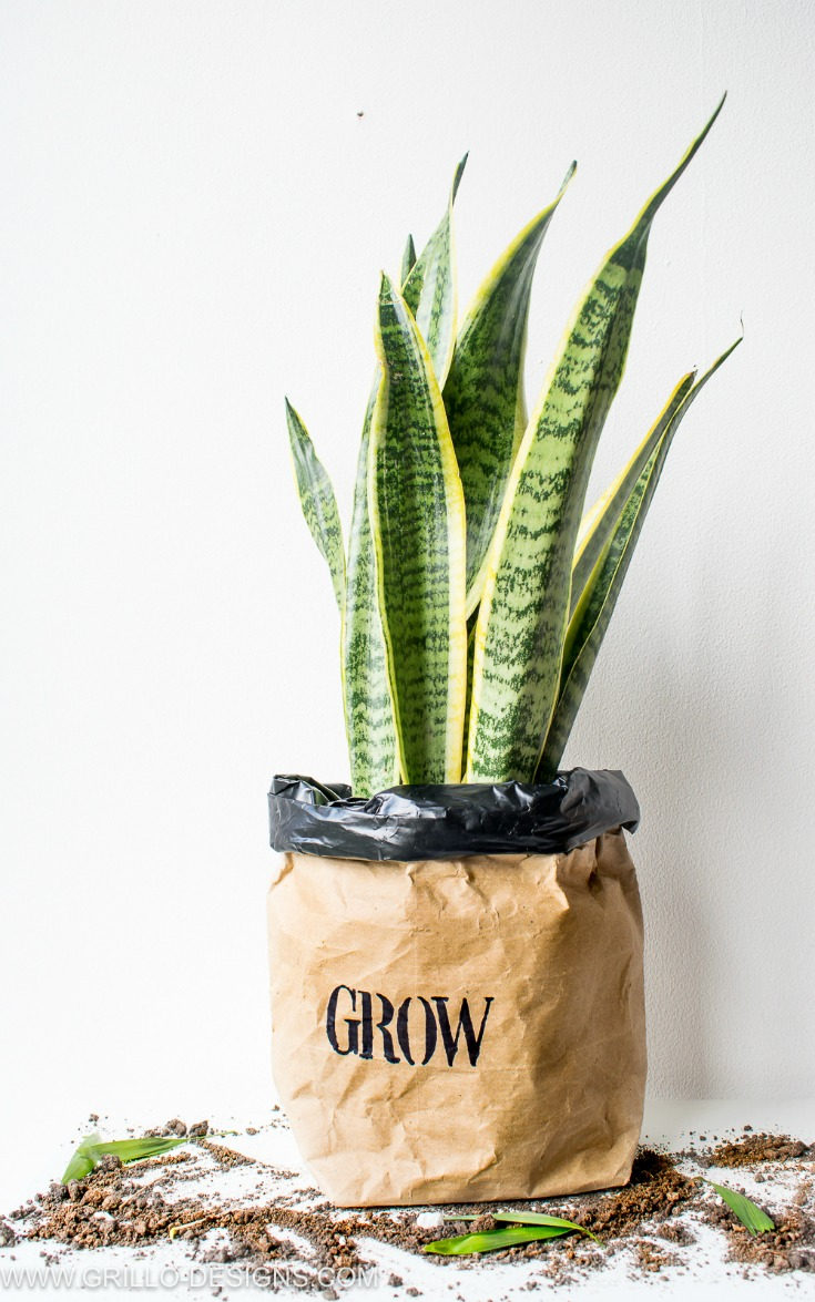Water safe kraft paper planter bags for your home / grillo designs www.grillo-designs.com
