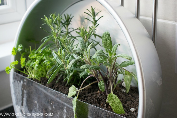 easy tutorial on how to make a herb planter / grillo designs www.grillo-designs.com
