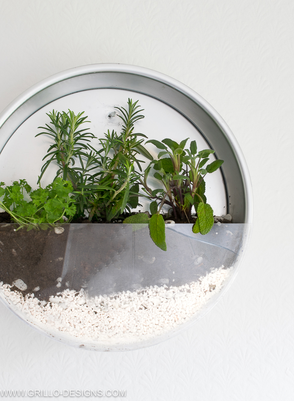 diy indoor herb planter attached to wall / grillo designs www.grillo-designs.com