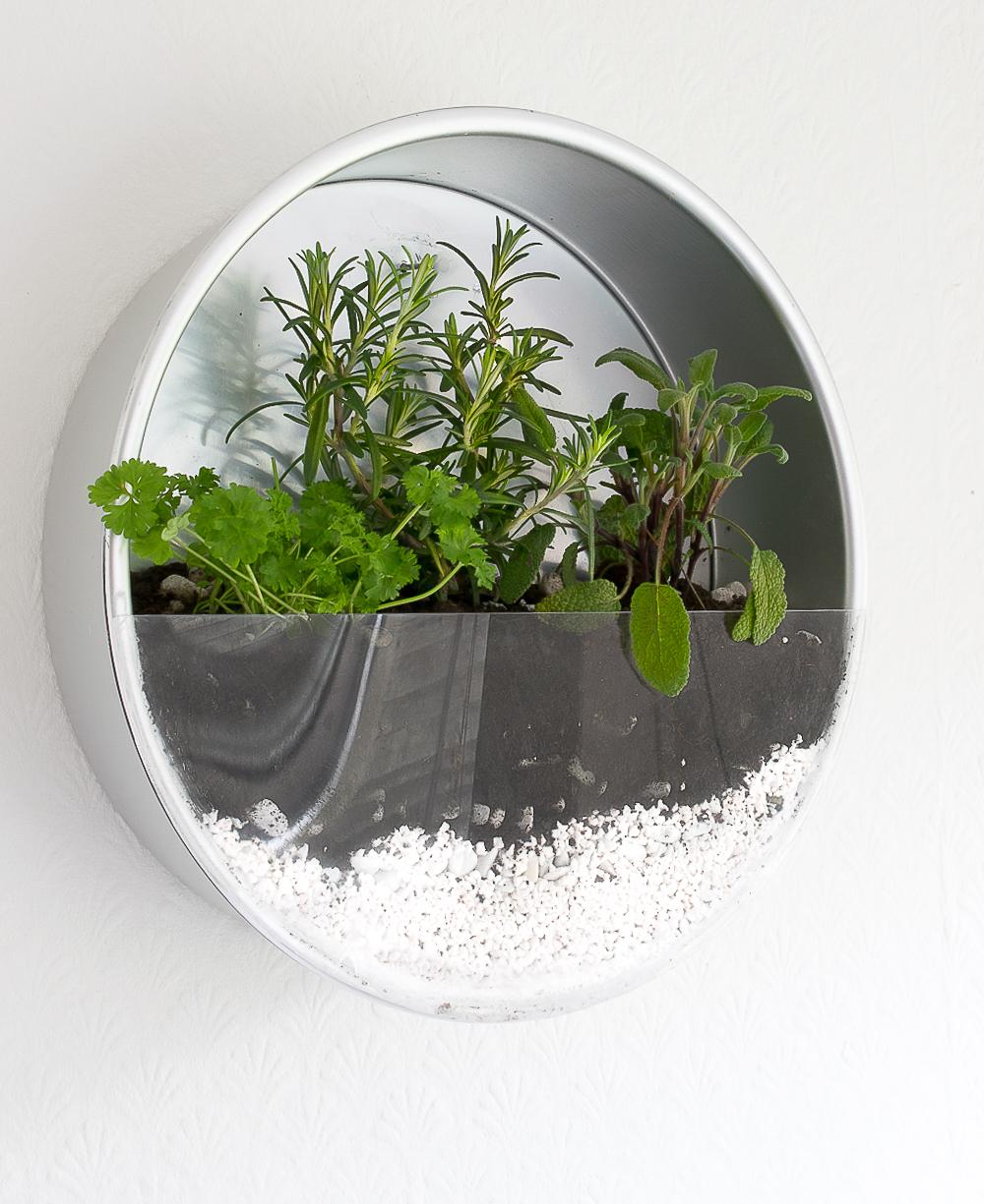 wall herb planter / grillo designs www.grillo-designs.com