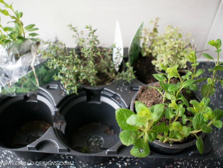 herb styling gardens with ideas home indoor for your garden planter