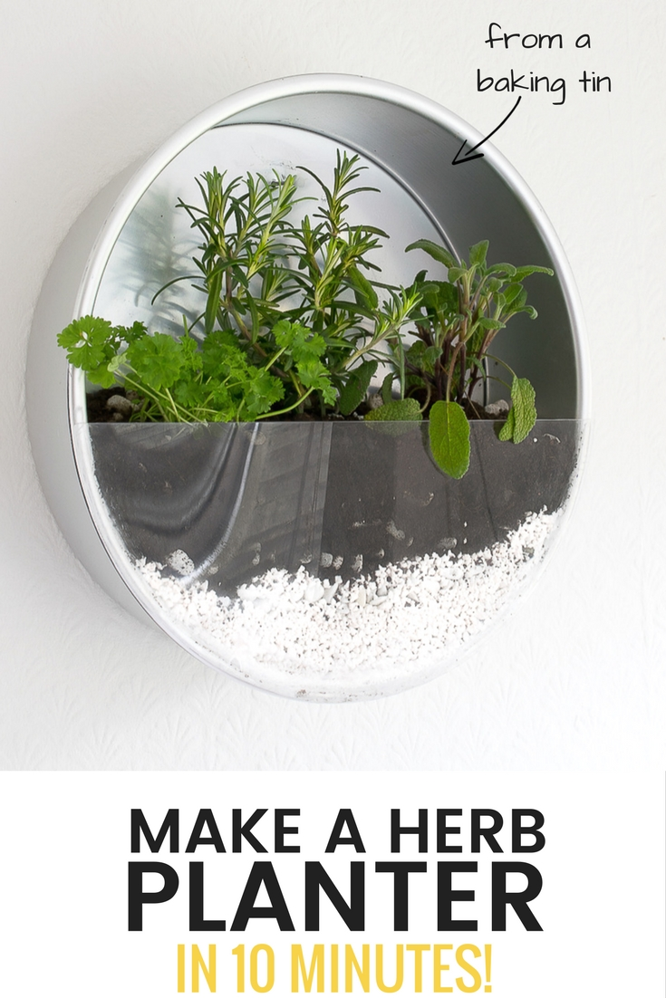 use old baking tins to make an indoor herb planter for your kitchen / grillo designs www.grillo-designs.com