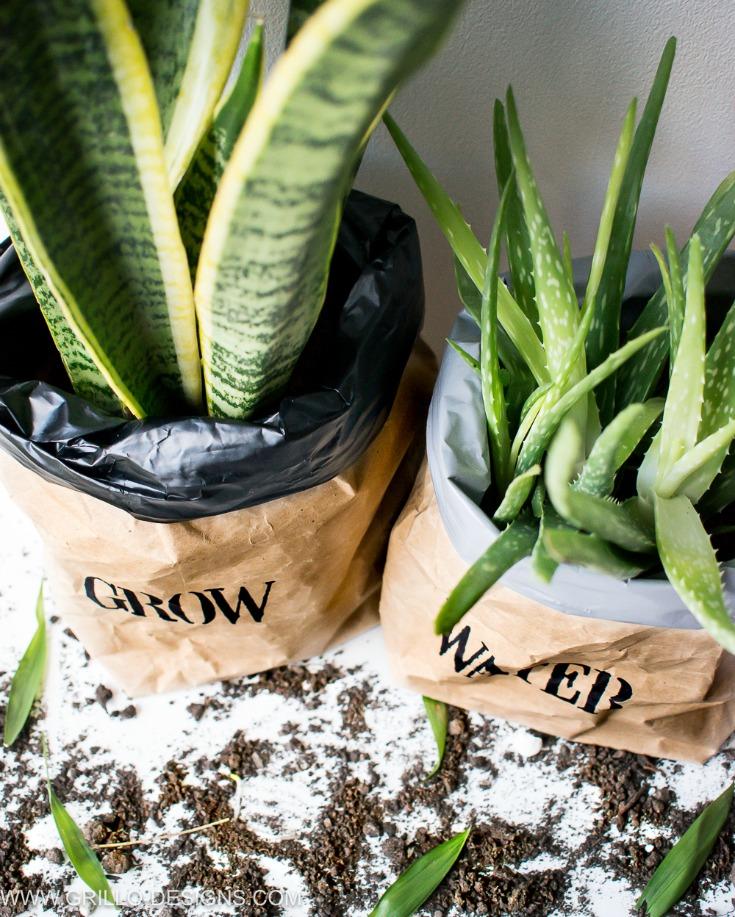 Top view of kraft paper planter bags / grillo designs www.grillo-designs.com