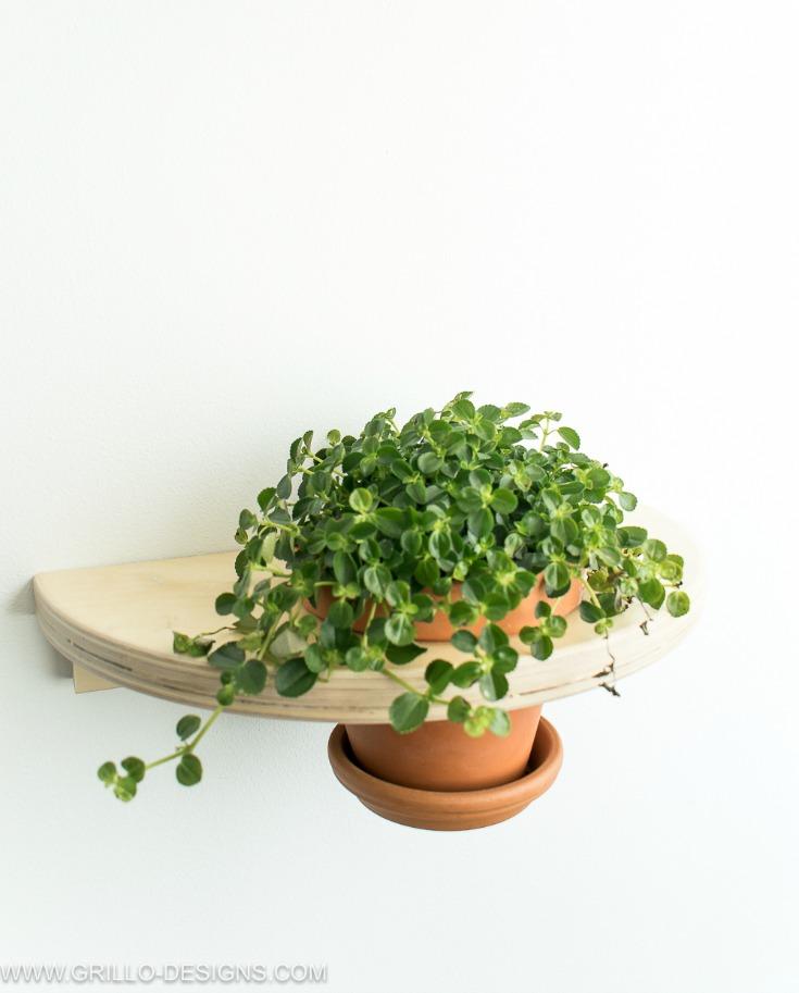 easy wall planter IKEA FROSTA hack idea / Grillo Designs www.grillo-designs.com