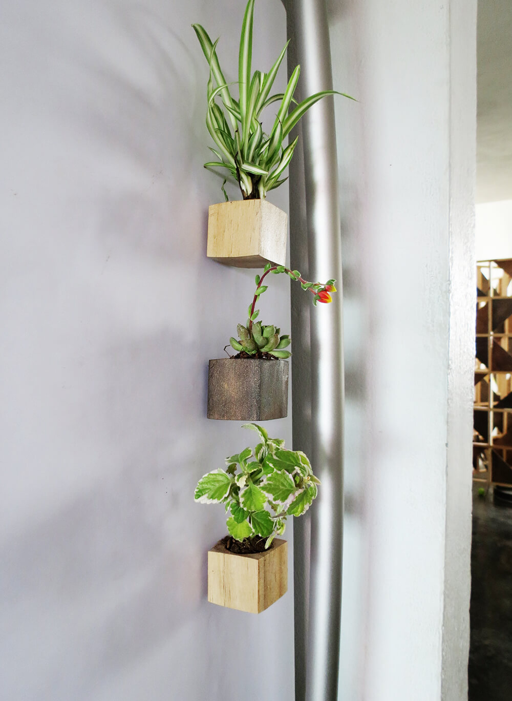 Magnet planters on the fridge / grillo designs