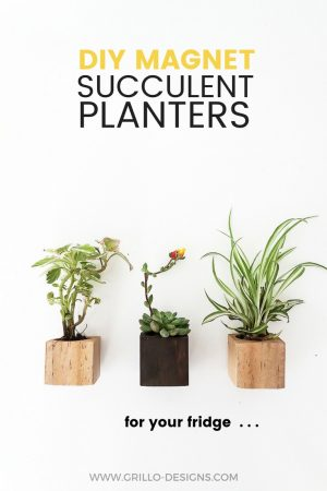 DIY MAGNET PLANTERS PINTEREST GRILLO DESIGNS