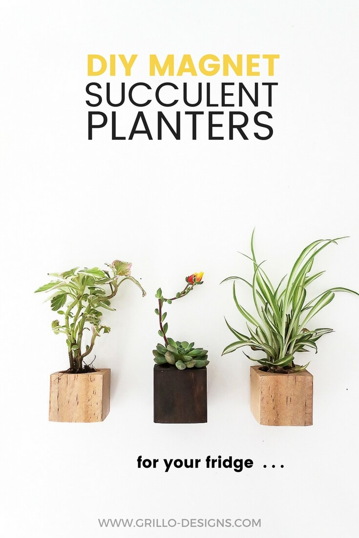 Learn how to create mini wooden magnet planters   -perfect for a little green growing nook on your kitchen fridge! /grillo designs