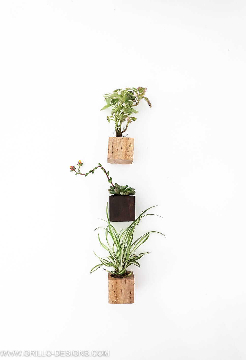EASY diy magnet planters for succulents / grillo designs