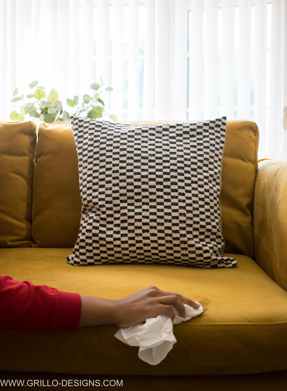 How to blot stains on a velvet sofa / grillo designs