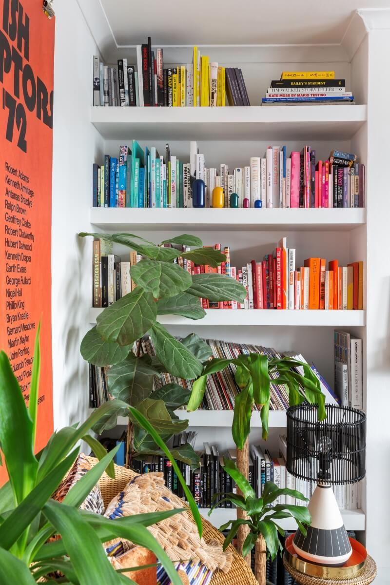 A colourful rental : up close picture of colour coded book shelf in the living room