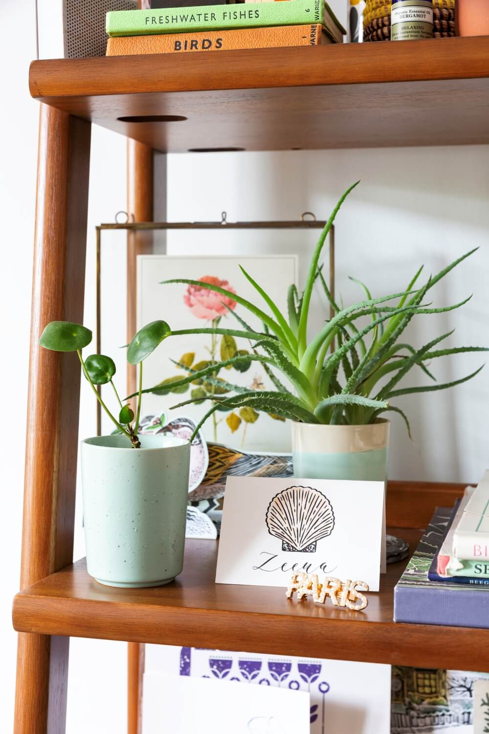 A close up of decorative items on west elm shelf. Items include indoor plants, and books
