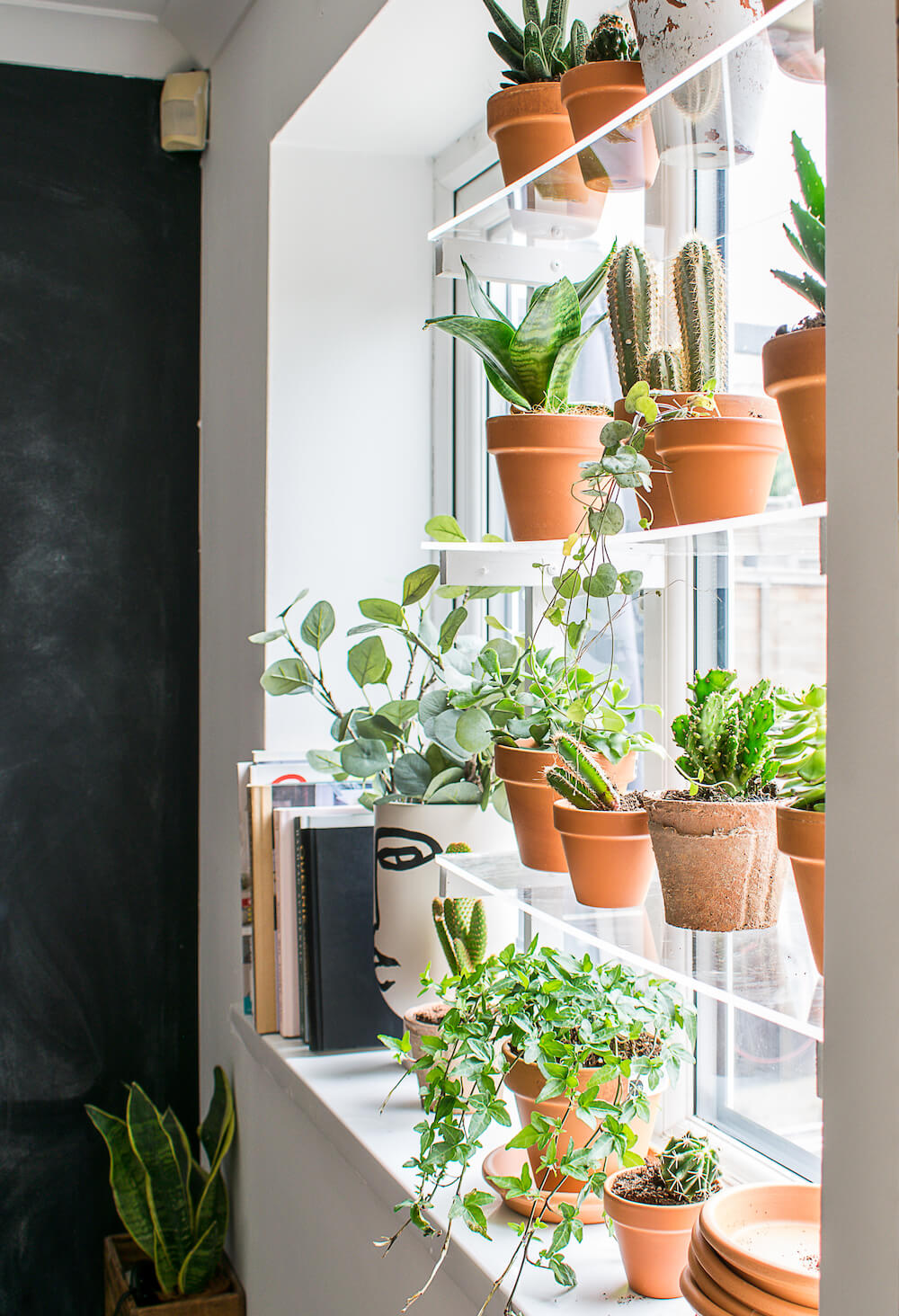 A side view of the window plant shelf.