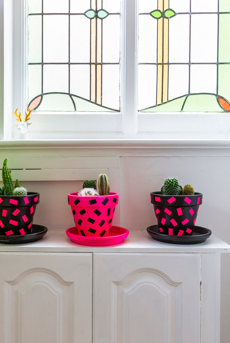 Plants pots decorated with contact paper on top of a cabinet