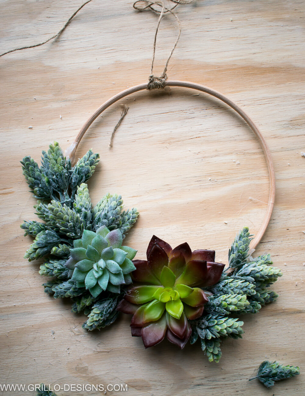 Picture showing the jute string in place on the succulent wreath