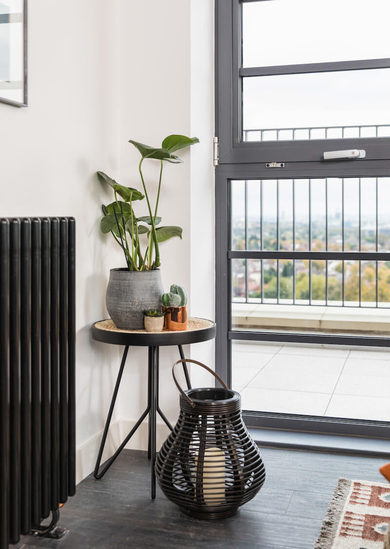 Image of plants on black side table next to the window