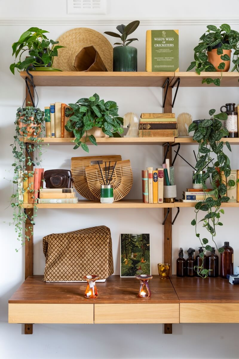 Close up of wall shelving DECORATED WITH PLANTS AND BOOKS