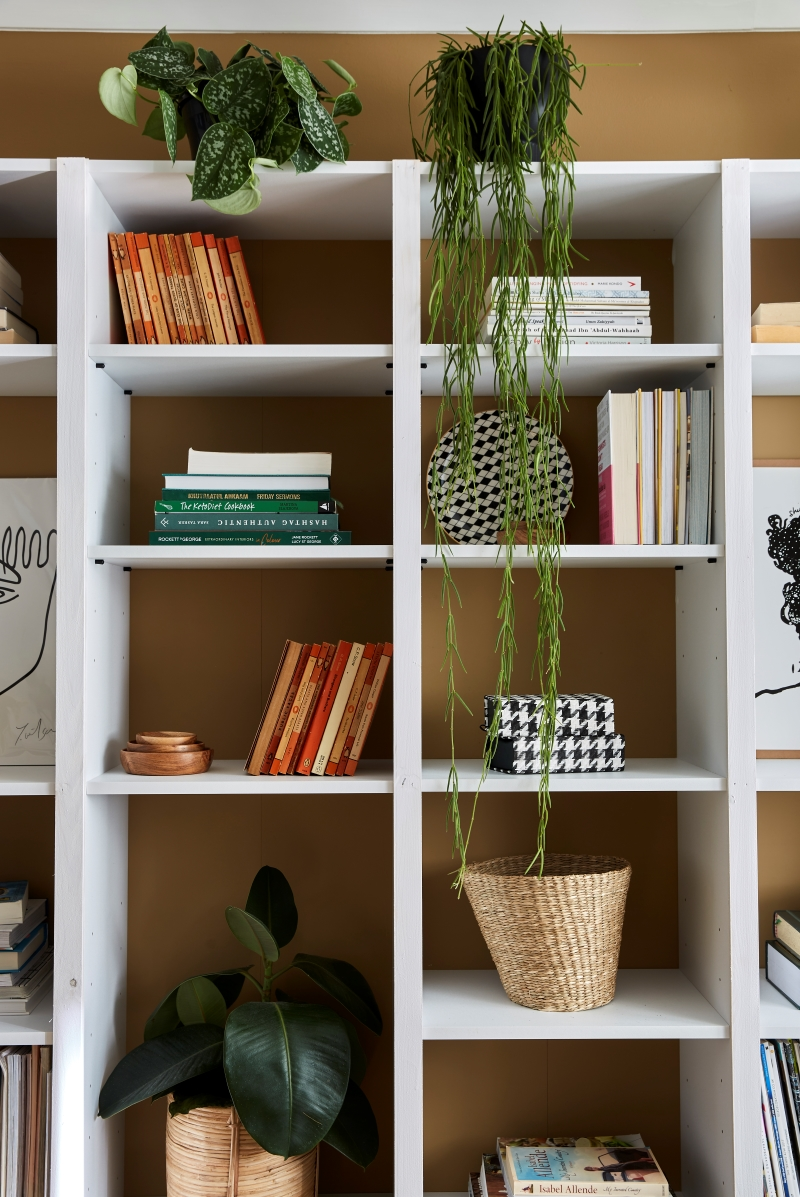 Close up of styled bookcase. Hanging plants atop the shelving