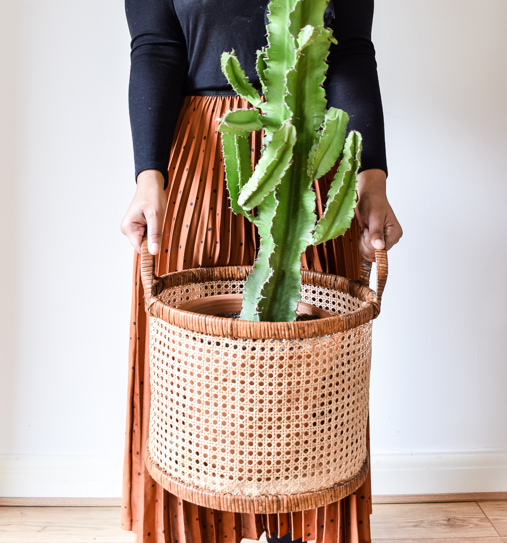 Medina holding a large cactus in a brown basket