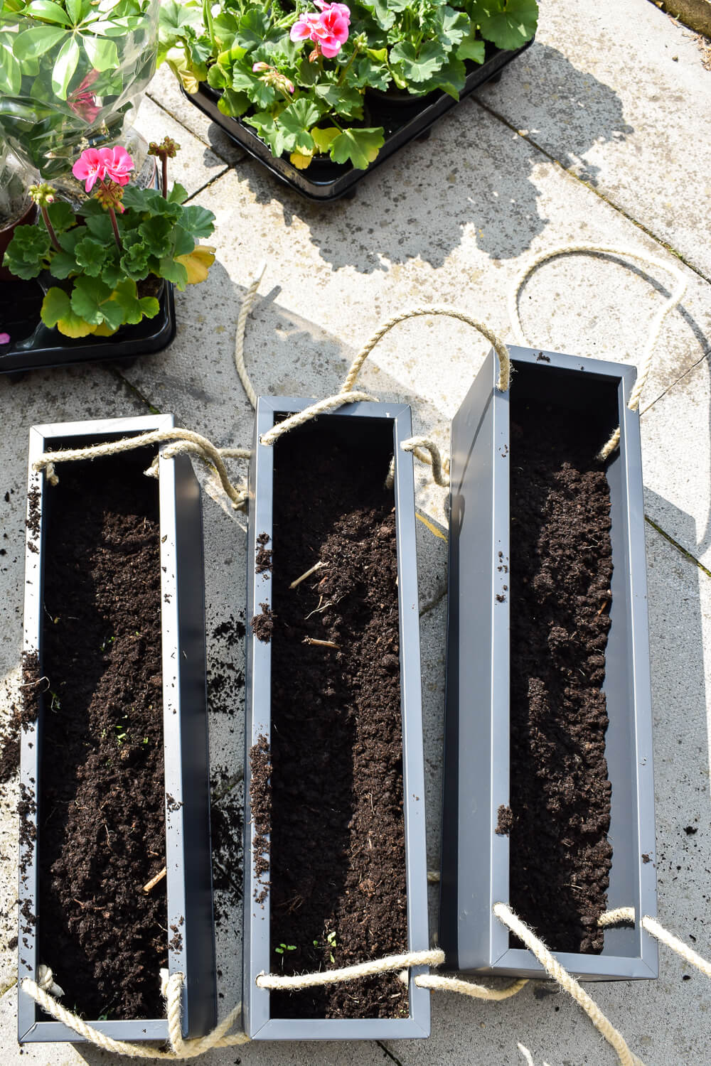 Soil in three metal planters